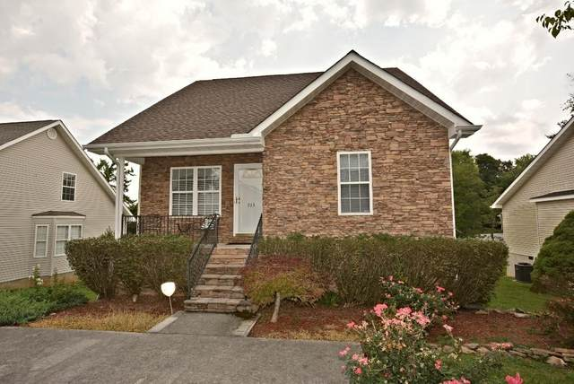 713 Plantation Drive, Pigeon Forge, TN 37863 (#1163952) :: Catrina Foster Group