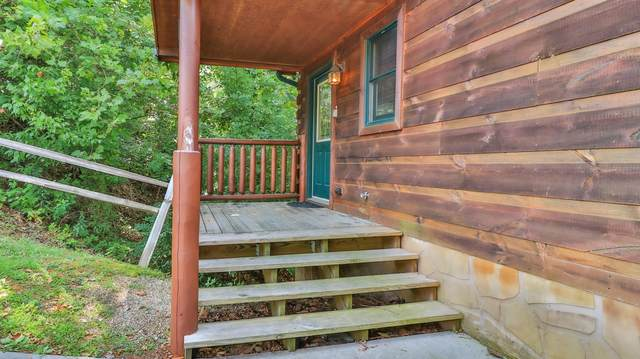 607 Quill Gordon Court, Pigeon Forge, TN 37863 (#1163980) :: Shannon Foster Boline Group