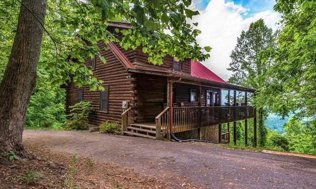 2438 Walnut Ridge Way, Sevierville, TN 37862 (#1164013) :: Catrina Foster Group