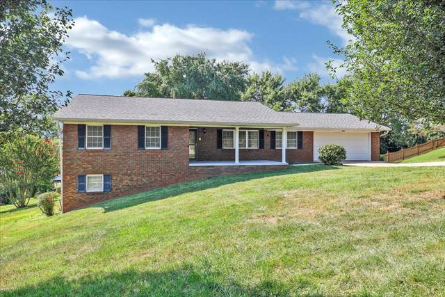 3904 Arline Drive, Knoxville, TN 37938 (#1164126) :: Realty Executives Associates