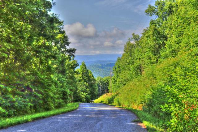 Lot 214 Clinch View Rd, New Tazewell, TN 37825 (#1164193) :: JET Real Estate