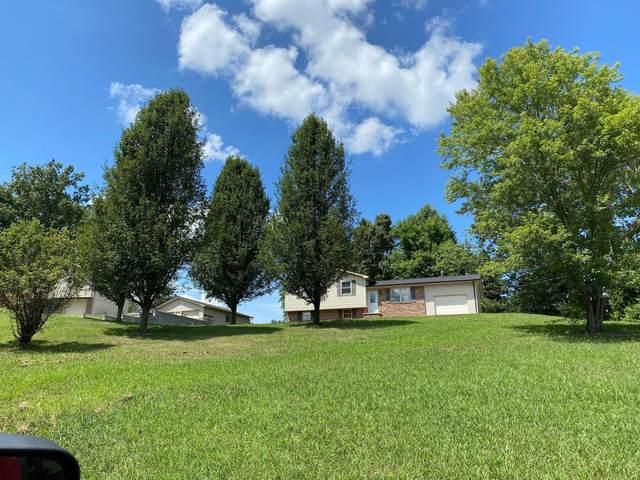 710 Robin Drive, New Tazewell, TN 37825 (#1164249) :: Billy Houston Group