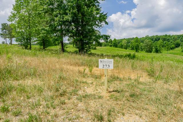 249 Lake Ferry Drive, Loudon, TN 37774 (#1164354) :: Shannon Foster Boline Group