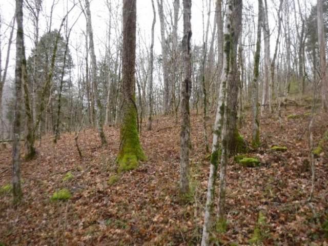 70.5ac Colepin Ridge Rd, Celina, TN 38551 (#1164437) :: Tennessee Elite Realty