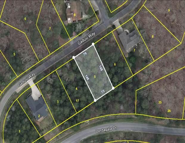 253 Gadusi Way, Loudon, TN 37774 (#1164452) :: Shannon Foster Boline Group