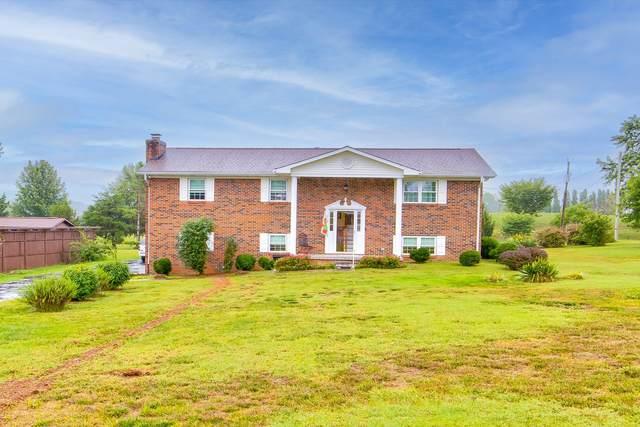 219 Jackson Hills Drive, Maryville, TN 37804 (#1164484) :: Catrina Foster Group