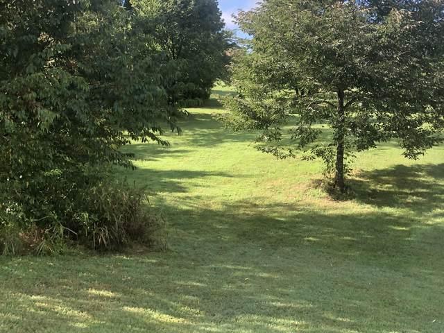 264 Walelu Trail W., Vonore, TN 37885 (#1164498) :: Billy Houston Group