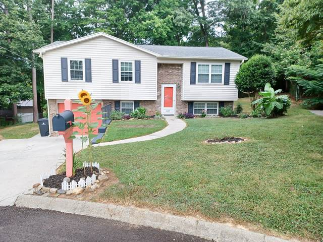6225 NW Starhurst Drive, Knoxville, TN 37921 (#1164539) :: Shannon Foster Boline Group