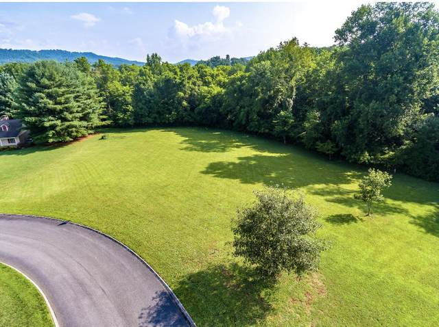 0 Hiley Drive, Sevierville, TN 37862 (#1164623) :: The Terrell-Drager Team