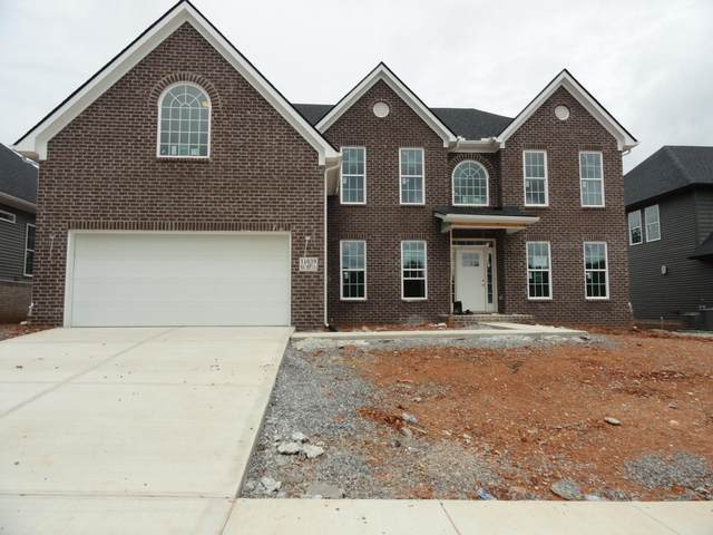 11039 Big Sky Lane, Knoxville, TN 37932 (#1164703) :: Shannon Foster Boline Group