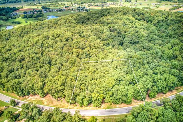 1515 Old Dogwood Tr, Loudon, TN 37774 (#1164716) :: Shannon Foster Boline Group