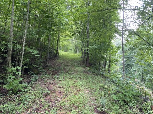 Fox Hunters Lane, Sevierville, TN 37876 (#1164862) :: The Terrell-Drager Team
