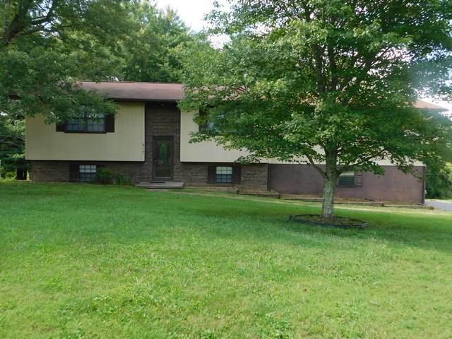 417 Melody Lane, New Tazewell, TN 37825 (#1164863) :: Billy Houston Group