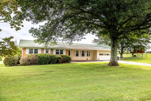 518 Greencrest Drive, Maryville, TN 37803 (#1164995) :: Realty Executives Associates