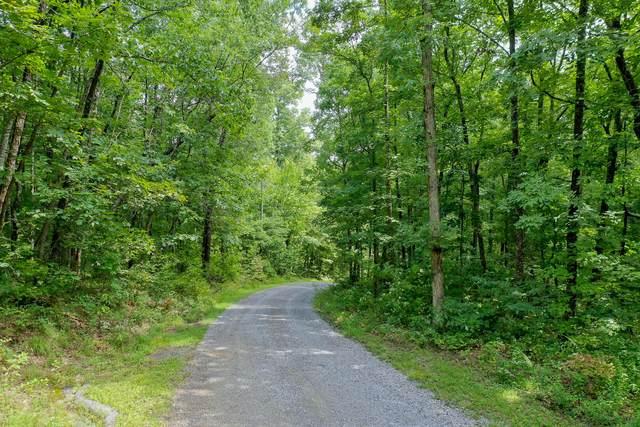 Avens Lane, Tallassee, TN 37878 (#1165006) :: Shannon Foster Boline Group
