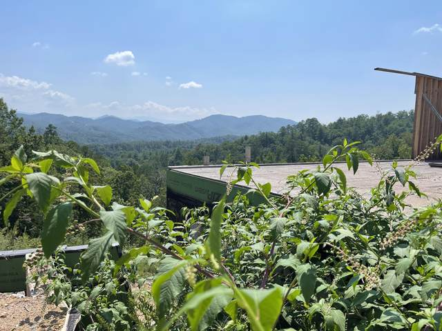 2957 Summit Trails Dr., Sevierville, TN 37862 (#1165147) :: Catrina Foster Group