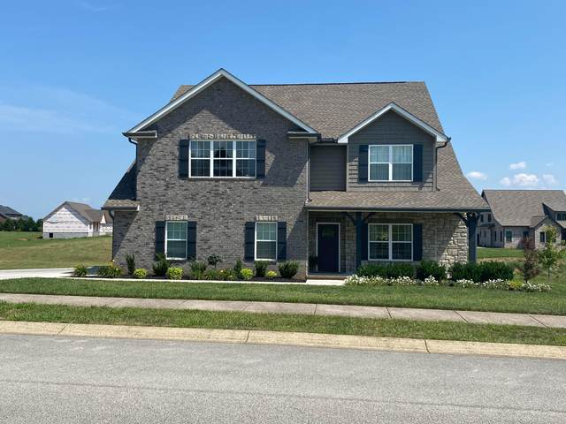 1710 Cool Brook Court, Sevierville, TN 37876 (#1165350) :: Billy Houston Group