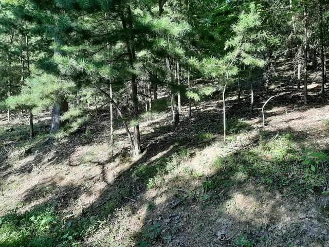 Deer Pond, LaFollette, TN 37766 (#1165451) :: Shannon Foster Boline Group
