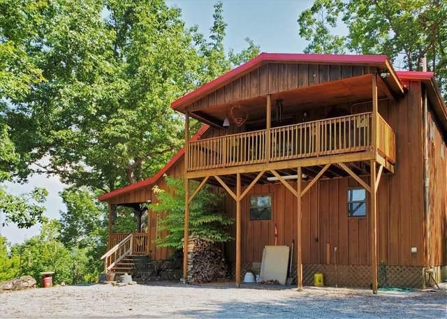 3159 Bear Mountain Lane, Sevierville, TN 37876 (#1165549) :: The Terrell-Drager Team