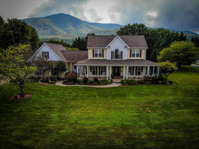 3529 Hiley Drive, Sevierville, TN 37862 (#1165641) :: The Terrell-Drager Team