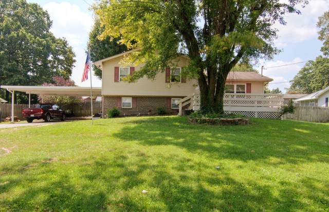 2317 Roundtree Rd, Knoxville, TN 37923 (#1165683) :: Catrina Foster Group