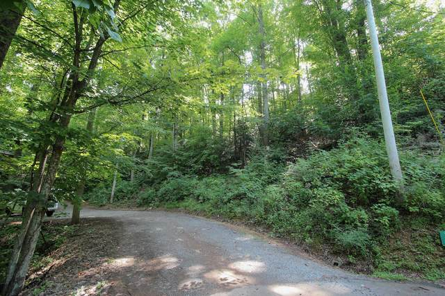 Lot 826 Orchard Dr., Sevierville, TN 37876 (#1166019) :: The Terrell-Drager Team