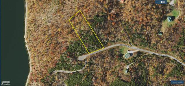 2128 Whistle Valley Rd, New Tazewell, TN 37825 (#1166121) :: JET Real Estate