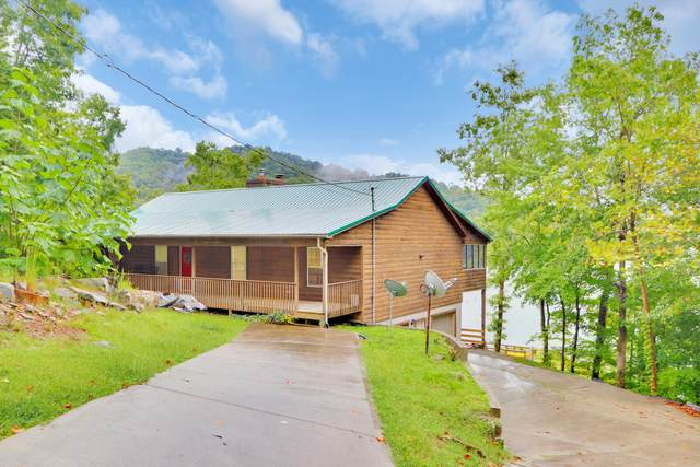 711 Norris Shores Drive, Sharps Chapel, TN 37866 (#1166141) :: JET Real Estate