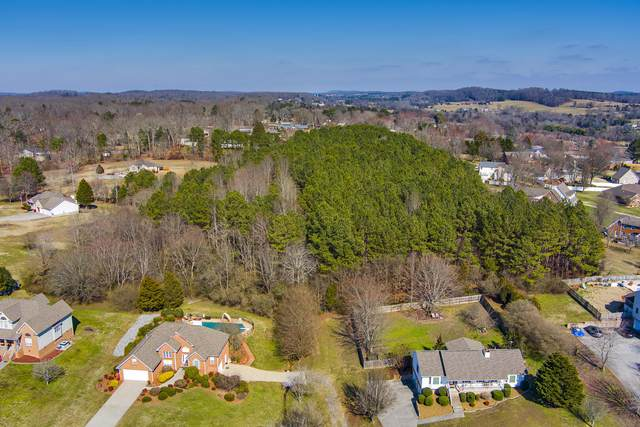 County Road 1150, Riceville, TN 37370 (#1166143) :: Shannon Foster Boline Group