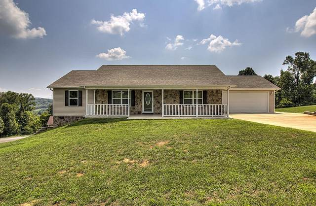 101 Walk In The Clouds Court, New Market, TN 37820 (#1166299) :: Realty Executives Associates