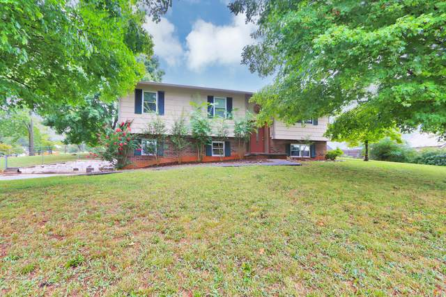 2620 Lesa Lane, Knoxville, TN 37912 (#1166326) :: Shannon Foster Boline Group