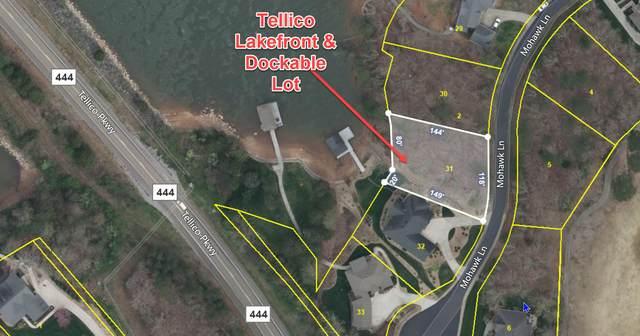 106 Mohawk Lane, Loudon, TN 37774 (#1166354) :: Cindy Kraus Group   Engel & Völkers Knoxville