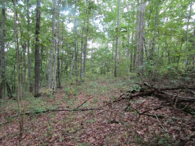 517 Backwoods Trails Lane, Celina, TN 38551 (#1166356) :: Tennessee Elite Realty