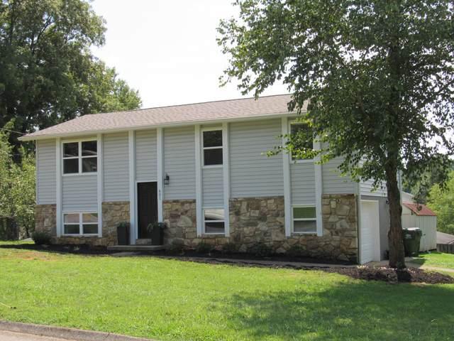601 Haverford Lane, Maryville, TN 37804 (#1166456) :: Billy Houston Group