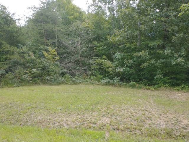 Lot #5 Crest View Drive, Sunbright, TN 37872 (#1166538) :: Catrina Foster Group