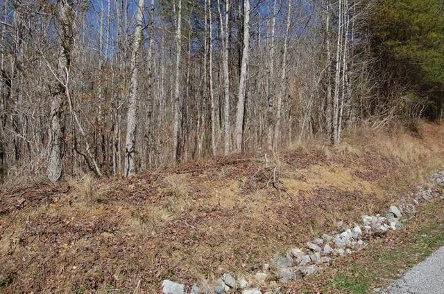 Bluegreen Way, Rockwood, TN 37854 (#1166610) :: Cindy Kraus Group | Realty Executives Associates
