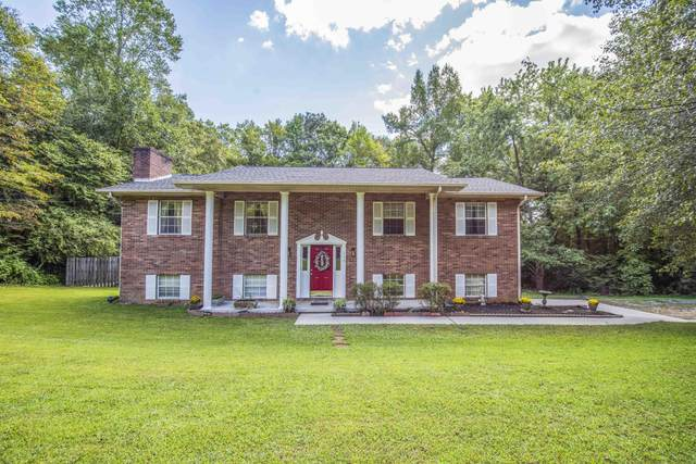 116 Pioneer Drive, Clinton, TN 37716 (#1166777) :: Shannon Foster Boline Group