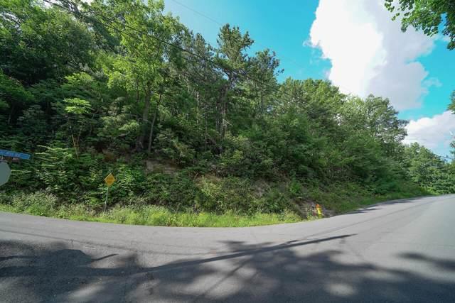 Lot 19/43/44 Upper Alpine Way, Gatlinburg, TN 37738 (#1166785) :: Billy Houston Group