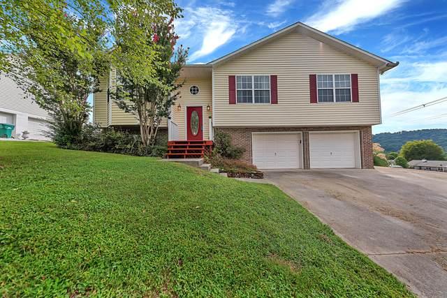 7420 Twin Brooks Blvd, Knoxville, TN 37918 (#1166804) :: Catrina Foster Group