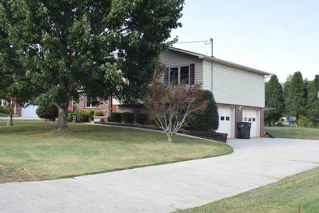 417 Britton Drive, Talbott, TN 37877 (#1166970) :: Shannon Foster Boline Group