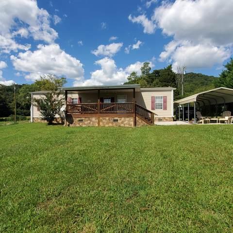 128 Berry Drive, Mooresburg, TN 37811 (#1167082) :: JET Real Estate