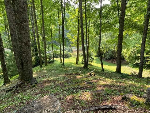 704 Heartwood Lane, Butler, TN 37640 (#1167132) :: Tennessee Elite Realty