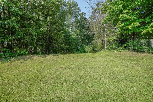 718 Devictor Drive, Maryville, TN 37801 (#1167449) :: Shannon Foster Boline Group