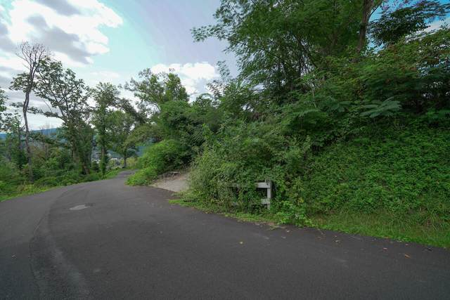 245 Browns Ridge Rd, Gatlinburg, TN 37738 (#1167552) :: Catrina Foster Group
