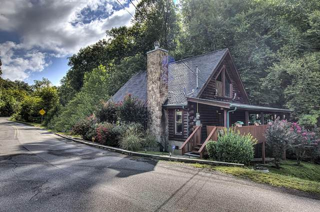 1316 Wedge Tailed Lane, Sevierville, TN 37876 (#1167568) :: The Cook Team