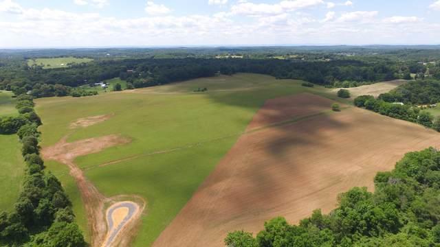 60 Acres Cedar Springs Rd, Riceville, TN 37370 (#1167716) :: Catrina Foster Group