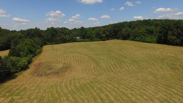 8 Acres Sweetfield Valley Rd, Athens, TN 37303 (#1167718) :: Catrina Foster Group