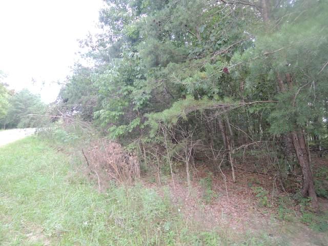 E Loomis Road, Jamestown, TN 38556 (#1167729) :: Catrina Foster Group