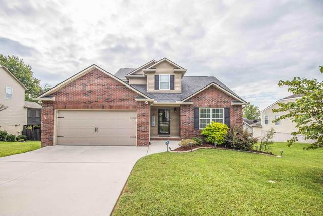 6416 Airtree Lane, Knoxville, TN 37931 (#1167877) :: The Cook Team