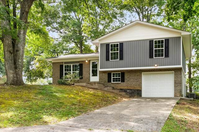 5110 Foxwood Rd, Knoxville, TN 37921 (#1167911) :: The Cook Team